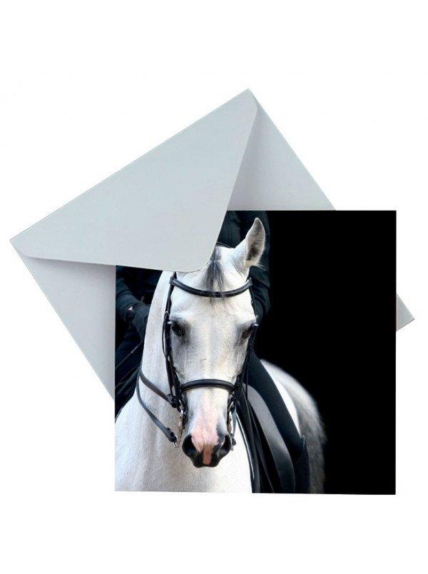 Kartka okolicznościowa z koniem - Gray's